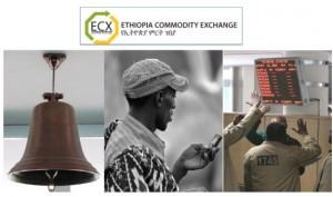 ECX photo 575